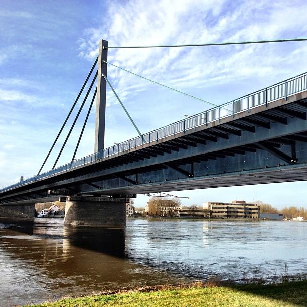 Wasserstand des Rheins am 24.12.2012 in Karlsruhe Maxau: 794 cm