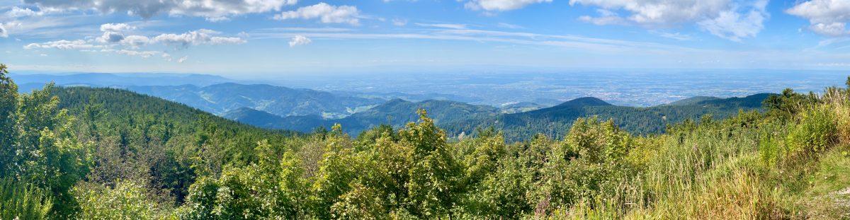 Blick von der Hornisgrinde ins Rheintal